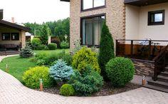 Side yard landscaping design