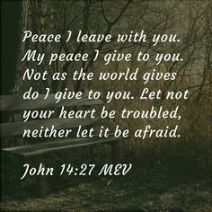 Peace I leave with you. My peace I give to you. Not as the world gives do I give to you. Let not your heart be troubled, neither let it be afraid. - John 14:27 MEV  (Keywords: Bible Quotes Depression Anxiety Fear Trouble Broken Peace God Jesus Spirit Heart Life Hope Love Trust Scripture Holy)