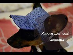 Летняя кепка для собаки своими руками (той-терьер) - YouTube