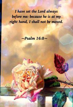 Psalm 16:8                                                       …