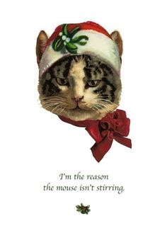 It's a Cat's Christmas - Card