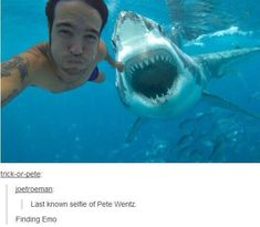 The shark just wanted in on that selfie action and Pete's just that punk rock