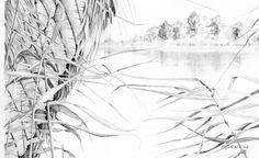 """Detail from bird artist Mark Dean's original """"Heron"""", a detailed pencil piece."""
