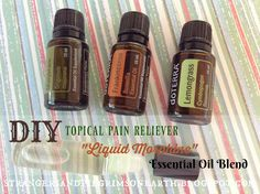 """Strangers & Pilgrims on Earth: DIY """"Liquid Morphine"""" Topical Pain Reliever Essential Oil Blend Recipe + DIY Natural Remedies Ebook GIVEAWAY!"""