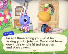 Animal Crossing : New Horizons pour Nintendo Switch Rosie Animal Crossing, Animal Crossing Memes, Nintendo Switch, Video Game Memes, Video Games, Rilakkuma Wallpaper, Gaming Memes, Cringe, Funny Animals