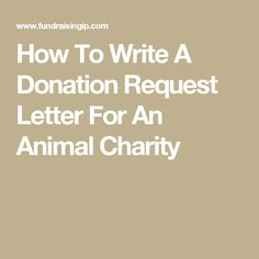 how to write a fundraiser flyer
