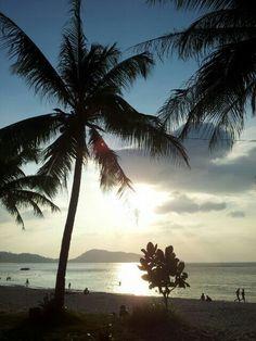Palm Patong beach