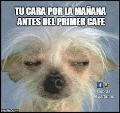 Un café por favor …