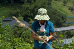 Young women organic farmer in Fukushima.