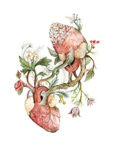 Print Beeing in love Poster Anatomical and Botanical Heart Illustration, Graphic Design Illustration, Bee Drawing, Watercolor Art Lessons, Medical Art, Love Posters, Anatomy Art, Heart Art, Art Inspo