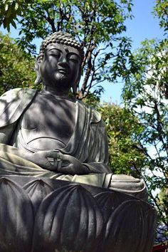 Reflectful Buddha in the grounds of a temple in Tokyo, Japan. Buddhism is a religion I have great time for and love it's peaceful nature. These temples and their serenity represent the fascinating juxtaposition of Tokyo and offer an escape from the chaos!   http://www.theroamingrenegades.com/2013/11/tokyo-japan-oct-2013-our-honeymoon.html  #japan #tokyo #buddha #temple #photography #travel   東京都 (Tokyo)