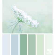 Color Field ❤ liked on Polyvore featuring backgrounds, colors, design seeds, fillers and green