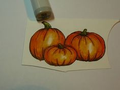 coloring pumpkins .... good for the my new stamp #copic