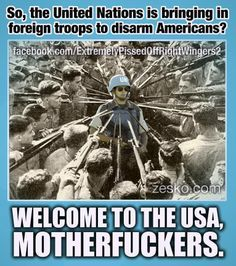 HAHAHAHAHAHA Would so love to see that day! The amount of troops needed to do this task would be in the millions and would be viewed as an invasion. Every red blooded American, including gang members would all unite for the common interest of exterminating foreign force! It would be epic and maybe a uniter to solve our in house problems and differences ;)