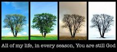 The Seasons of the tree are just like the seasons we go through in our lives..  season of happiness, loneliness, joy, marriage, singleness, plenty. etc
