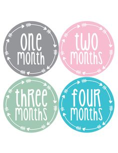 Baby Girl Monthly Milestone Age Stickers Style #1026