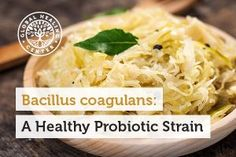 Bacillus coagulans is a beneficial probiotic strain that helps to promote digestive health, reduce diarrhea caused by antibiotics, encourage a healthy immune system, normalize nutrient absorption i… Healthy Food Blogs, Healthy Living Tips, Healthy Recipes, Prebiotics And Probiotics, Fermented Foods, Fitness Nutrition, Ethnic Recipes, Gut Health, Health Facts