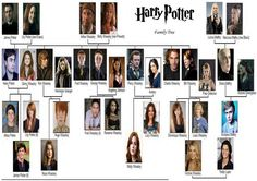 Harry Potter family tree idk how I feel about the pics of people who weren't in the movie Harry Potter Characters Names, Harry Potter Facts, Harry Potter Books, Harry Potter Universal, Harry Potter Fandom, Harry Potter World, Lily Potter, Hermione Granger, Harry Potter Family Tree