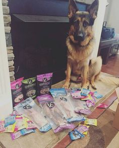YOU can have all these goodies plus MORE if you WIN the #VEdoggelganger…
