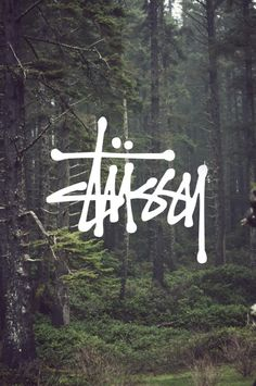 Stussy #forest