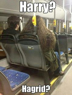 Haha harry potter and hagrid sighting. Mundo Harry Potter, Harry Potter Jokes, Hogwarts, Dump A Day, Mischief Managed, I Laughed, Funny Pictures, Funny Pics, Funny Stuff