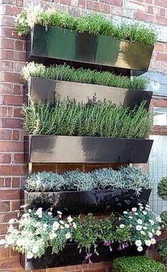 Have a wall...plant a garden.... Garden Wall