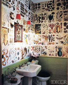 Sea Life Bathroom
