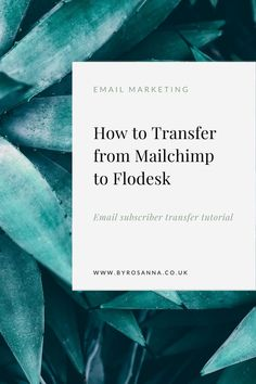 Transferring your email list over from Mailchimp To flodesk is easy! I'll show you how in this quick tutorial… | #flodesktips #flodesktutorial #emailmarketingtips #emailmarketing
