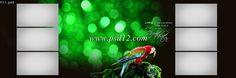 Photoshop Backgrounds: 48 Karizma Photo Album PSD Template Size 12x36 - 11