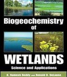 Solution manual for advanced macroeconomics 4th edition by romer biogeochemistry of wetlands science and applications pdf fandeluxe Image collections