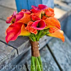 Pink & orange calla lily Bouquet....switch stem ribbon to teal and it will be the perfect wedding bouquet