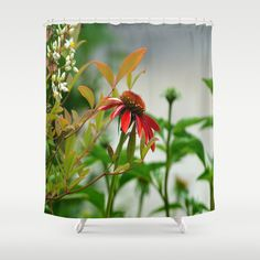 15% off Shower curtains