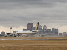 Calgary Airport - where the coyotes run along our plane during takeoff! Missionary Training Center, Sister Missionaries, Dear Sister, New West, Coyotes, Latter Day Saints, Airports, Alberta Canada, Calgary