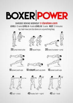 Boxer Power Workout                                                       …