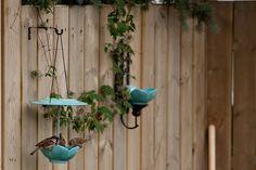 DIY wall-mounted bird feeder and bird bath   Offbeat Home