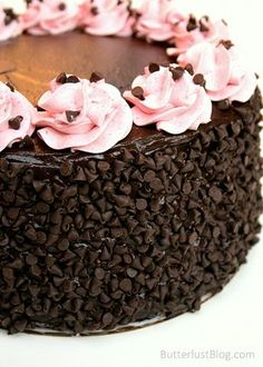 Chocolate Raspberry Layer Cake What a pretty cake!! Who's going to make me this after baby is born?? Haha