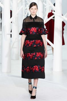 Delpozo Fall 2015 Ready-to-Wear Fashion Show - Liz Kennedy