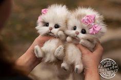 Kittens made from felt Baby Animals Super Cute, Cute Baby Cats, Cute Little Puppies, Cute Stuffed Animals, Cute Little Animals, Cute Dogs And Puppies, Cute Cats And Kittens, Cute Funny Animals, Kittens Cutest