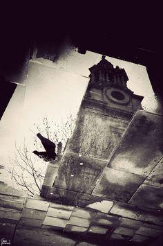 London's Puddles Reflect the City's Beauty - My Modern Metropolis by Gavin Hammond