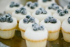 Blueberry and Sugar Cupcake Wedding Dessert.looks absolutely perfect Wedding Cake Rustic, Wedding Desserts, Wedding Cupcakes, Farm Wedding, Wedding Ideas, Chic Wedding, Wedding Details, Dream Wedding, Wedding Decorations
