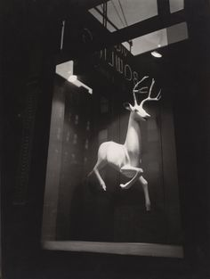 We're closed for Christmas Day. Sending warm wishes to all those celebrating!    [Berenice Abbott. An Industrial Designer's Window, Bleecker Street. 1948]