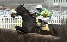 11 things you might not know about AP McCoy. Article from Horse & Hound.