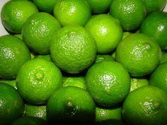"""Limão Tahiti ou Taiti, citrus latifolia. É fruto da enxertia da lima da pérsia sobre o limão cravo e não apresenta sementes. O fruto possui casca verde, lisa ou ligeiramente rugosa, sendo a variedade mais popular do país, em 90% das plantações. O rendimento do sumo é de 50%, contra 42% do limão verdadeiro (siciliano), sendo bastante usado em receitas de sorvetes, doces e tortas. Recomendável para cultivo comercial e consumo """"in natura"""". Fotografia: Dr. Dalmo Lopes de Siqueira/ Divulgação."""