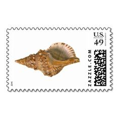 ==>Discount          Vintage Marine Life Ocean Animal, Triton Seashell Postage           Vintage Marine Life Ocean Animal, Triton Seashell Postage today price drop and special promotion. Get The best buyReview          Vintage Marine Life Ocean Animal, Triton Seashell Postage Review from As...Cleck Hot Deals >>> http://www.zazzle.com/vintage_marine_life_ocean_animal_triton_seashell_postage-172681875653058307?rf=238627982471231924&zbar=1&tc=terrest