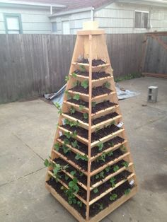 How to build a vertical garden pyramid tower for your next diy outdoor project ninelace strawberry garden kundasang ninelace ninelace erdbeere garten kundasang ninelace garden kundasang ninelace strawberry Vertical Vegetable Gardens, Vertical Garden Diy, Vegetable Gardening, Organic Gardening, Diy Garden Projects, Outdoor Projects, Pvc Pipe Garden Ideas, Outdoor Ideas, Wood Projects