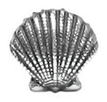 Seashell for my bracelet.