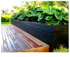 Tractor seat planting at front and slow growing kentias behind Small Tropical Gardens, Tropical Backyard, Landscaping With Rocks, Pool Landscaping, Pool Landscape Design, Low Maintenance Garden, Small Garden Design, Garden Structures, Garden Planning