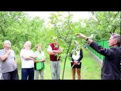 Gardening, Youtube, Garten, Lawn And Garden, Youtube Movies, Horticulture