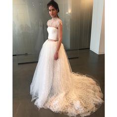 Christa Taylor Fashion Designer