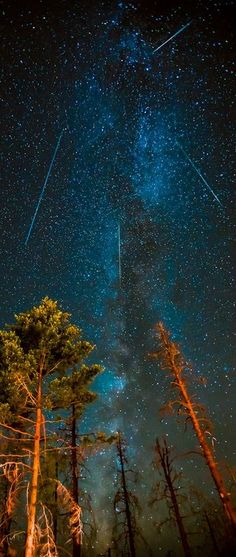 Perseids Meteor Shower, Milky Way 2012 - Northern California.